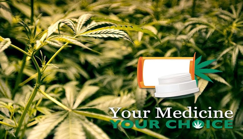 Medical Cannabis Consultants