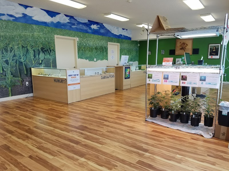 Oasis Cannabis Monmouth